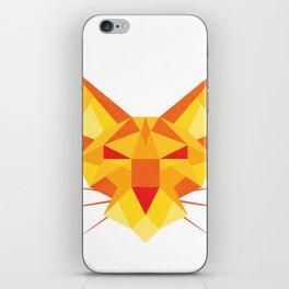 Geometricat iPhone Skin