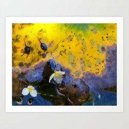 Two tadpoles Art Print