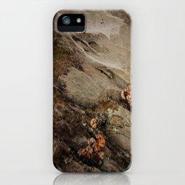 Himalayan flowers iPhone Case
