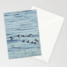 Oystercatchers in Flight. Stationery Cards