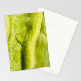 Wrinkled Green Stationery Cards