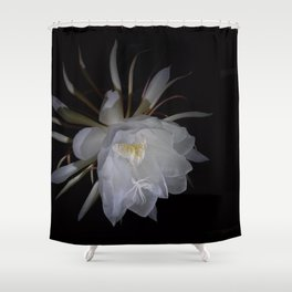 Sparkling Queen Flower of the Night Shower Curtain