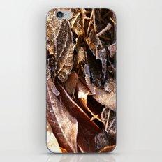 Autumn frost  iPhone & iPod Skin