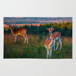 Deer Three Rug