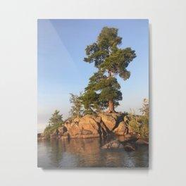 White Pine Island Metal Print