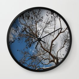 Skeleton of A Pine Tree Against Sky and Clouds Wall Clock