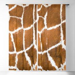 Giraffe skin close up illustration Blackout Curtain