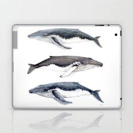Humpback whales Laptop & iPad Skin