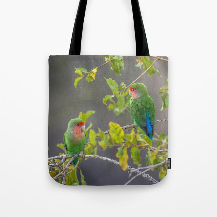 Birds of Namibia 5 Tote Bag