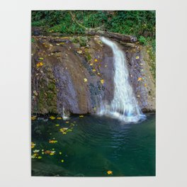 Autumn leaves in the waterfall Poster