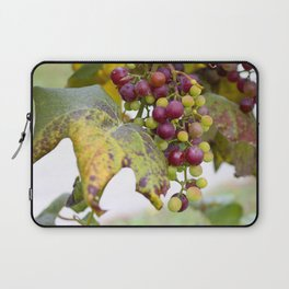 Green and purple grapes on the vine Laptop Sleeve