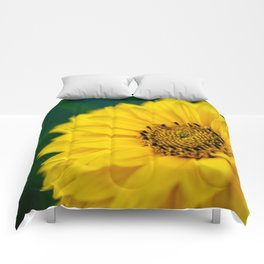 Yellow Daisy - Flower Photography Comforters