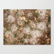 Floats Canvas Print