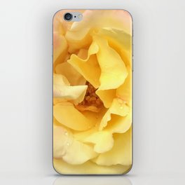 Summer Rose in Pink and Yellow iPhone Skin