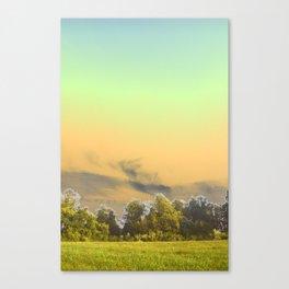 pihog Canvas Print
