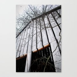 Up, up, up, up Canvas Print