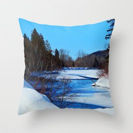 Wonderful River in Spring Throw Pillow