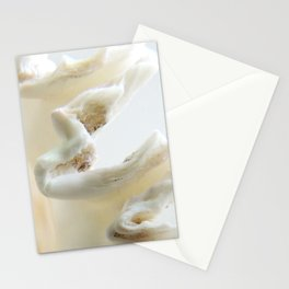 White Shell Wave Stationery Cards