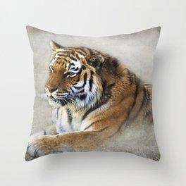 Big Kitty-kitty Throw Pillow