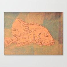 Pale Fish Canvas Print