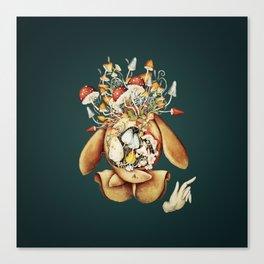 Toadstool Spirit Canvas Print