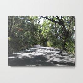 Road to Adelaida Metal Print