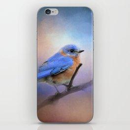 The Happiest Blue - Bluebird iPhone Skin
