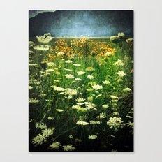 Summer's Dream Canvas Print