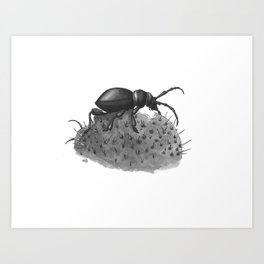 Inktobober 2016: Cactus Longhorn Beetle Art Print