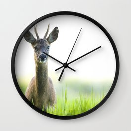 Roe Deer Buck 1 Wall Clock