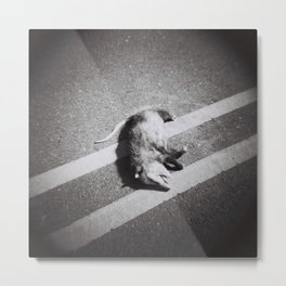 Playing Dead? No. Metal Print