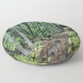 Nature Landscape Forest Trail Floor Pillow