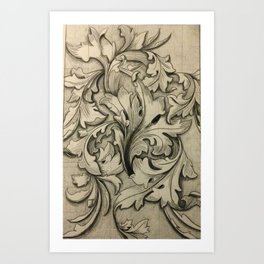 Acanthus Leaves Drawing