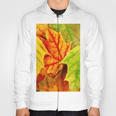 Color Leaves Hoody