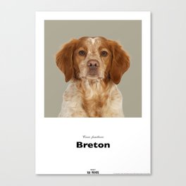 Project 100 Dogs Bellis the Breton Canvas Print