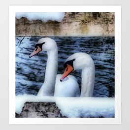 Two swans in the snow Art Print