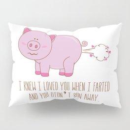 Love fart Pillow Sham