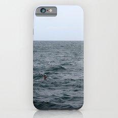 Hidden Birds Slim Case iPhone 6s