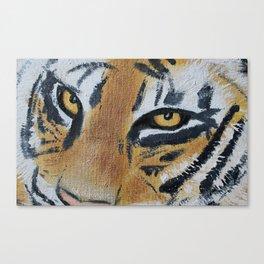 Tiger Eyes 2 Canvas Print