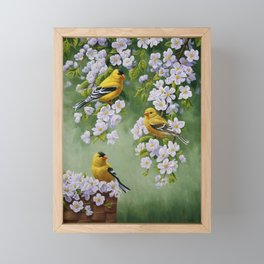 Goldfinches and Spring Apple Blossoms Framed Mini Art Print