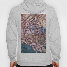 Cherry Blossoms 8scenes, Hirosaki Castle - Digital Remastered Edition Hoody