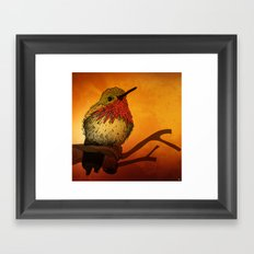The Sunset Bird Framed Art Print