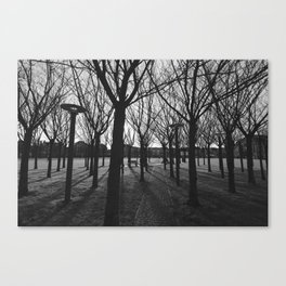 View of Amsterdam Canvas Print