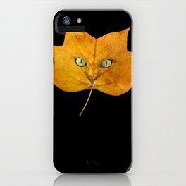 Autumn Cat-2 iPhone Case