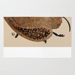 Exotic Wood Tortoise Beetle Rug