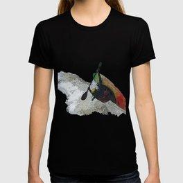 Kayak Decent T-shirt