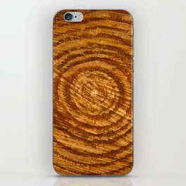 The Rings of Time iPhone Skin