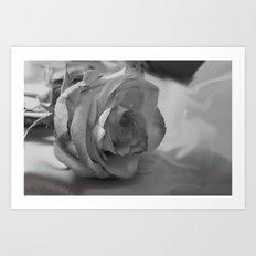 Black and White Rose Art Print