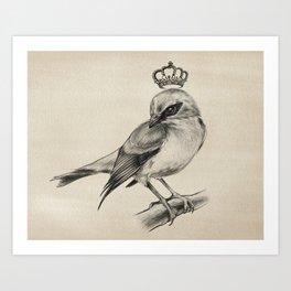 Bird Drawing | Nursery | Baby Room | Nature Art | Animal | Animals Art Print