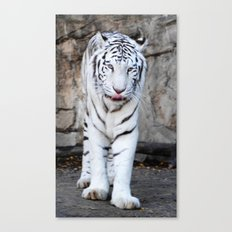 Into The Eyes Of A Tiger Canvas Print